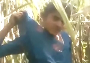 College Girl Fuck in Forest Very Hot Video